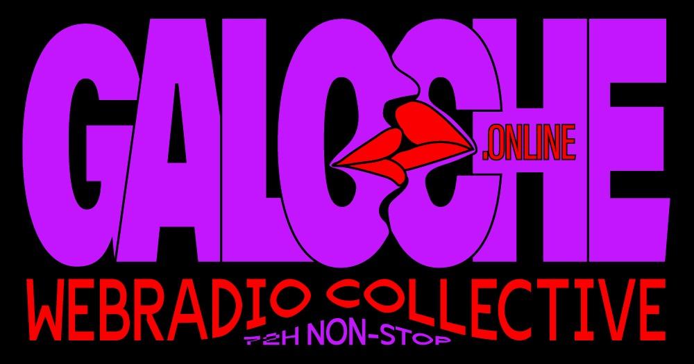 Radio Galoche, le podcast du Serveur Vocal Humain avec Julien Daillère